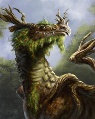 Дракон-дерево